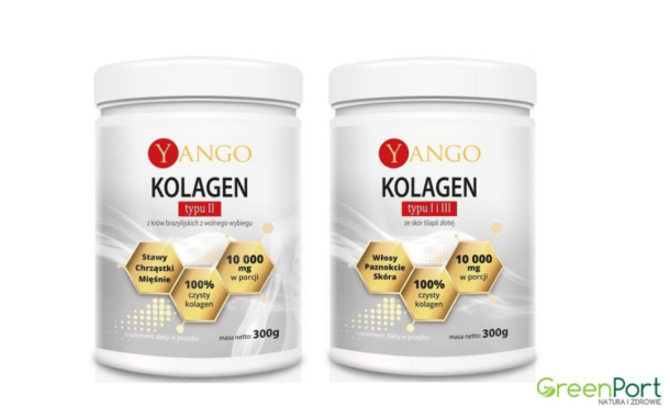 Yango kolagen typu II oraz Yango kolagen typu I i III